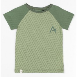 AlbaBabY t-shirt Miguel Hedge Green Harlequin