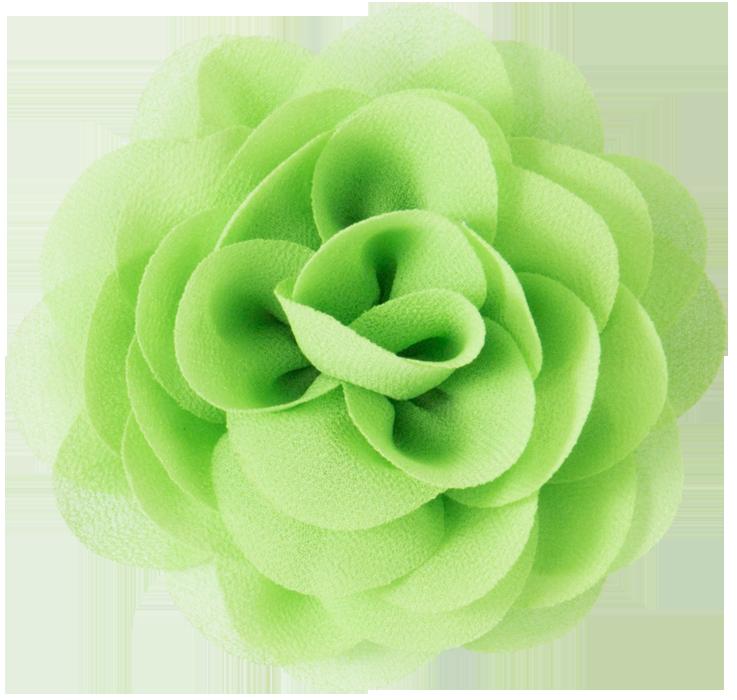 Afbeeldingen Groene Bloemen