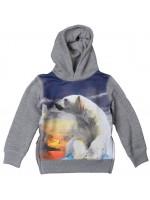 Hooded sweater met ijsbeerprint van het merk Claesens.