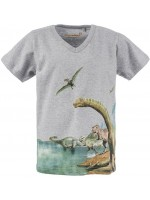 Stones & Bones t-shirt Dinoscape grey