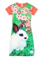 Wild Jurk Mini Rabbit