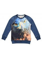 Wild sweater Jake Blue Eagle