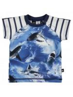 T-shirt met haaien van het Deense merk Molo. Het t-shirt is gemaakt van Oekotex gecertificeerd katoen en heeft gestreepte mouwen.