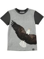 Molo t-shirt Raven Eagle