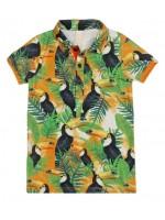 Wild polo Toucan